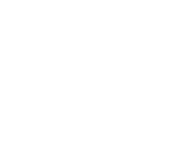 Falcon Electric Aviation